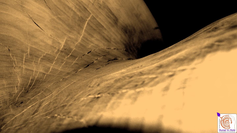 Fotokunst von Kunst in Holz by Mario Mannhaupt
