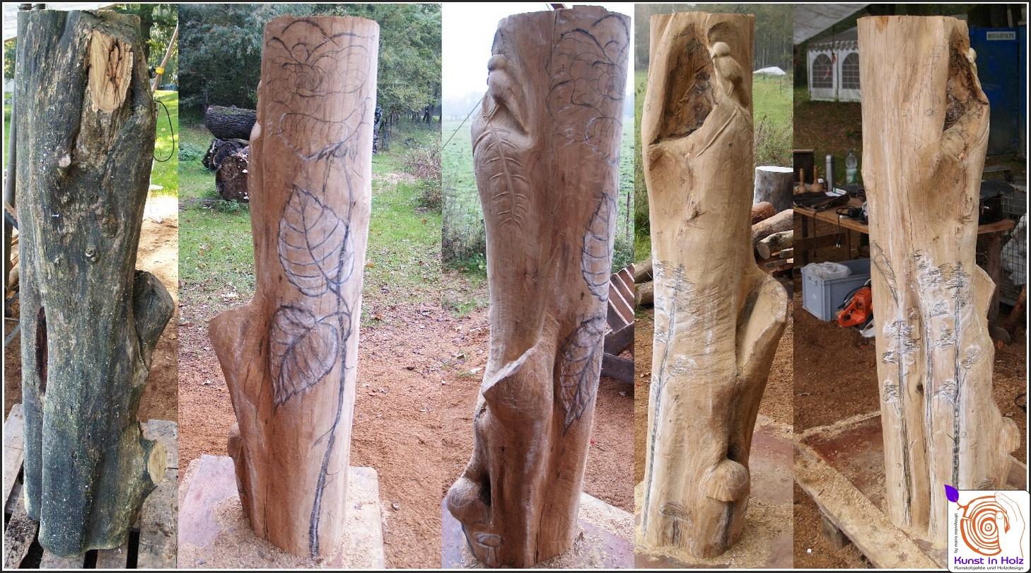 Eine Rose und Natur - Motiven im Holzstamm