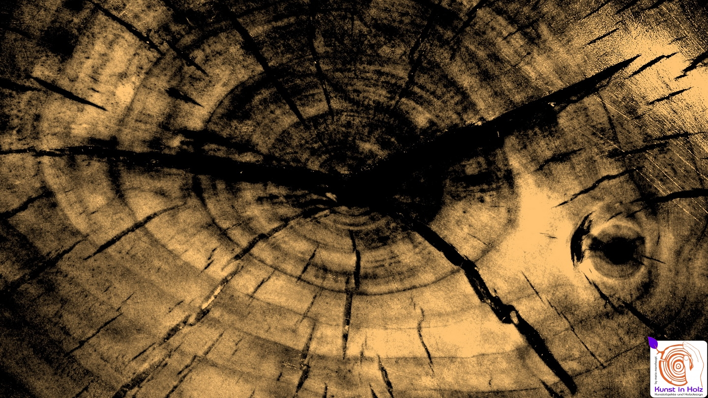 Fotokunst - künstlerische Holzgestaltung Mario Mannhaupt