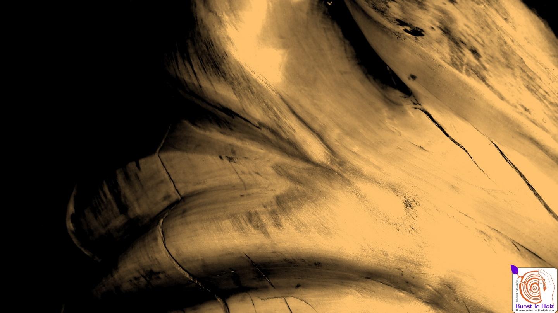 Fotokunst zeigt schönste Formen aus Holz!